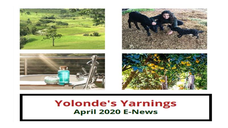 Yolonde's Yarning: April 2020 E-News